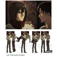 I'm not happy about how Mikasa looks here. Anime Meme, Funny Anime Pics, Attack On Titan Meme, Attack On Titan Fanart, Attack On Titan Ships, Aot Memes, Funny Memes, Dark Fantasy, Aot Gifs