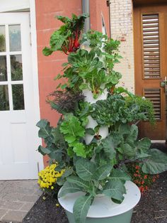 What a great example of the TowerGarden  The Future Of Urban & Suburban Gardening: No Dirt, No Mess, No Kneeling, No Weeding perfect for your deck, patio, porch or yard. www.theliving.towergarden.com