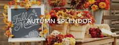 Autumn Splendor - Michaels 2014 fall line- also inspirational