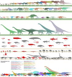 Dinosaurs size comparison charts – pIXELsHAM Computer Animation, 3d Animation, Dinosaurs Preschool, Sculpting Tutorials, Animation Tutorial, 3d Tutorial, 3d Artist, Design Tutorials, Cinematography