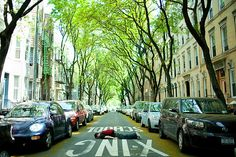 Yeah, they're planking, but I want to live on this street...wherever it is!
