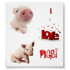 VERY cute pig poster- I love pigs! This website has TONS of pig stuff!