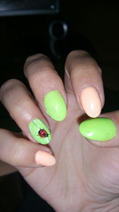 Animal design nails ladybird