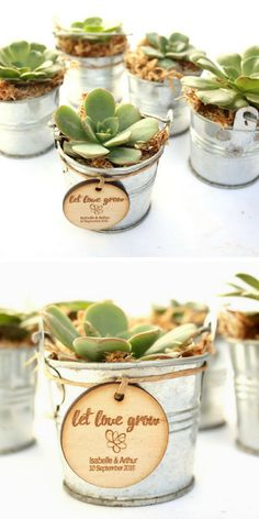 Personalised Wedding Favour Tags, Timber Tags, 'Let Love Grow' with succulent illustration, Set of Wedding Shower Favors, Beach Wedding Favors, Wedding Favor Bags, Personalized Wedding Favors, Wedding Gifts, Wedding Art, Wedding Ideas, Succulent Favors, Succulent Wedding Favors