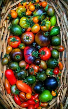 Farmers Market Recipes, Bountiful Harvest, Food Pictures, Food Pics, Mouth Watering Food, Food Photography Styling, Fruits And Vegetables, Farm Life, Fresh Fruit