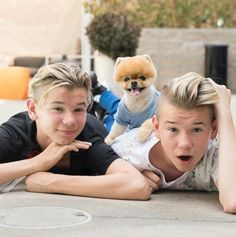 jiffpom❤ Cute Dogs, Marcus Y Martinus, Love U Forever, With All My Heart, Cute Animals, Animals And Pets, Your Smile, Puppys, Stars