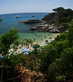 L'isola d'Elba, Livorno, Tuscany... the perfect place to end a week of travel.....