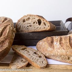 Some beautiful and delicious artisan bread recipes for your bread-baking enjoyment. Artisan Bread Recipes, Baking Stone, Grain Foods, How To Make Bread, Bread Baking, Sprouts, Breads, Tortillas, Pancakes