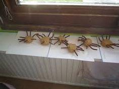 spinnen kleuters - Google zoeken