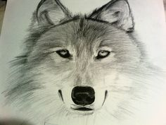 Dibujo Lobo a sombra de Clase de Dibujo 2 by EnriqueNg.deviantart.com on @deviantART