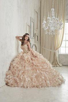 Pretty quinceanera mori lee vizcaya dresses, 15 dresses, and vestidos de quinceanera. We have turquoise quinceanera dresses, pink 15 dresses, and custom quince dresses! Sweet 15 Dresses, Pretty Dresses, Puffy Dresses, Long Dresses, Dress Long, Rose Gold Quinceanera Dresses, Wedding Dresses, Quinceanera Party, Prom Party