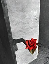 Dialogo: la carta come memoria - Casa della Memoria e della Storia - Dipartimento Cultura - Cultura Roma
