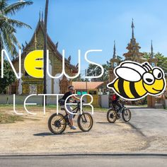 In the newsletter archive of Buzzy Bee Bike you can always find back all the news we spread around. It contains our quarterly newsletters from October 2017 till the most current one