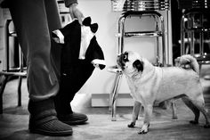 Amazing Photography at Wedding. Captured by Olya Vysotskaya. ISPWP Wedding Photography Contest Winners SPRING 2016.