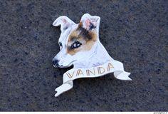 Spilla Vanda - Giusi Alghisio - cane