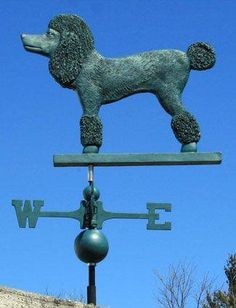 Weather vanes POODLES in every direction works for me how about you???