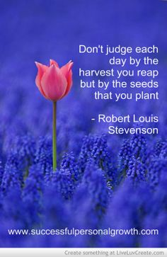 Don't judge each day by the harvest you reap but by the seeds that you plant - Robert Louis Stevenson http://www.successfulpersonalgrowth.com