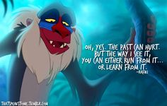 """Oh, yes. The past can hurt. But the way I see it, you can either run from it…or learn from it.""  – Rafiki"
