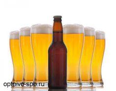 Разливное пиво в кегах в Санкт-Петербурге