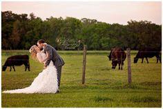 Farm wedding, barn wedding, Florida Barn Wedding, Agritourism