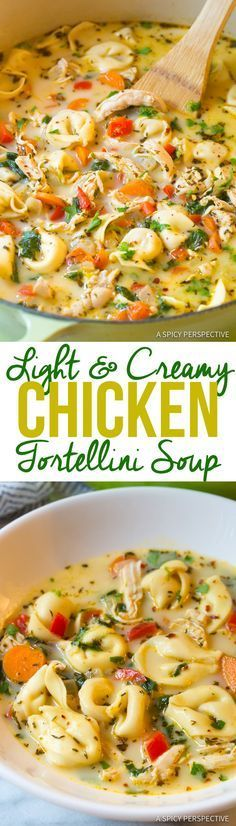 Light and Creamy Chicken Tortellini Soup Recipe. A cozy blend of chicken, vegetables, spice, cheese, and tortellini in a thin creamy broth. Lightened-up! Slow Cooker Recipes, Cooking Recipes, Healthy Recipes, Crockpot Meals, Simple Recipes, Freezer Meal Recipes, Healthy Delicious Recipes, Freezer Soups, Diet Recipes