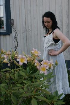 magnolaipearl evening feelings www.ulvsbygarden.net