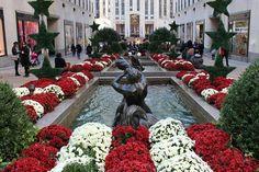 The Channel Gardens   Rockefeller Center