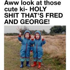 Awe! Phelps twins!!!