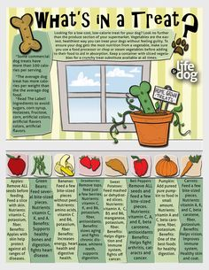 Printable infographic on fruit and veggie treats for your dog!
