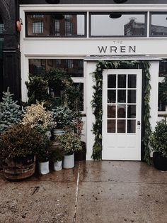 Wren, English/Irish gastropub, American Nouveau, E Village, NYC - 344 Bowery, www.thewrennyc.com