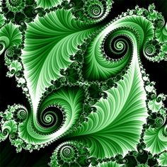 Green fractal color pop