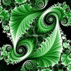 Green fractal color pop