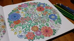 Youngok's Happy Arts  #coloringbookforadults #coloringbook #colortheory #secretgarden #johannabasford #secretforest #secretforestocean #비밀의정원 #컬러링북
