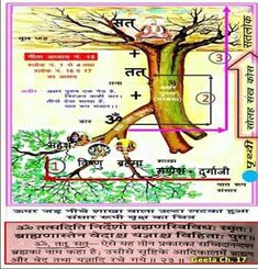 Who is true spiritual techar : तत्वदर्शी संत Spiritual Images, Spiritual Words, Spiritual Teachers, Believe In God Quotes, Quotes About God, God Healing Quotes, Positive God Quotes, Good Friday Quotes Jesus, Inspirational Quotes From Books