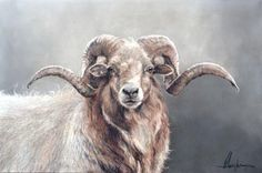 Sheep Paintings, Country Paintings, Animal Paintings, Farm Animals, Animals And Pets, Wooly Bully, Sheep Art, Cow Painting, Animal Heads