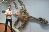 Ancient Marine Reptiles Flew Through the Water http://whtc.co/7xze