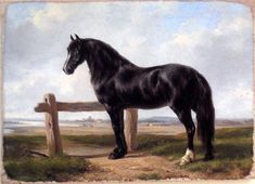 #art Vintage Art Painting Print On Canvas Ready to Hang Stallion Horse NEW RARE please retweet
