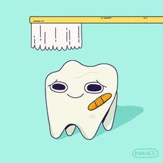 'It's not just sugar alone that causes cavities, it's the lack of nutrients that strengthen teeth.'
