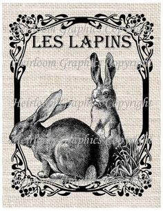 Rabbit Words French Iron On Digital Transfer - French Les Lapins Rabbit Transfer For Totes Tees Pillows Burlap Transfers Towels Burlap Background, Burlap Projects, Vintage Crafts, Vintage Labels, Digital Collage, Vector Art, French Clipart, Bunny, Images