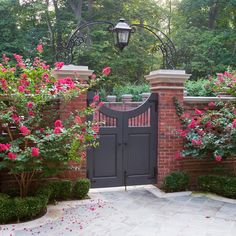Wrought Iron Garden Gate Design Ideas, Pictures, Remodel, and Decor - page 2