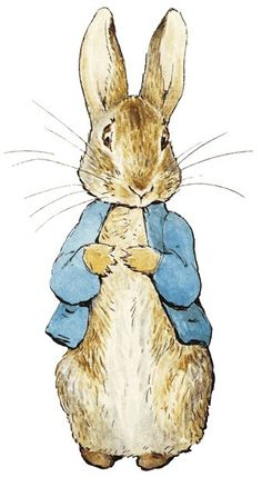 Peter Rabbit - the most popular creation of Beatrix Potter, introduced in 'The Tale of Peter Rabbit', 1902. When she met Norman Warne, Potter was a 35 year old spinster. She had firm ideas about how she wanted her book to look, insisting it be small enough for little hands, that text and illustrations be on separate pages, and that the price be low.