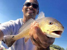 #redfish #goldfish #Florida #saltlife #fish #wildman #florida #jax #wildlife #outdoors #catch #release by joe_jaxmarinestore