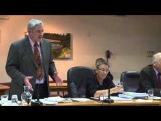 Part 5 of the WDC meeting about Hunderwasser Wairau Maori Art Centre