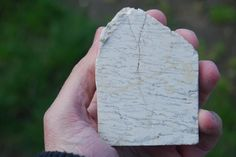 Hand samples of portuguese plutonic rocks: graphical hercynian pegmatite (Gerês).  Amostras de mão de rochas plutónicas portuguesas: pegmatito-gráfico (Gerês).
