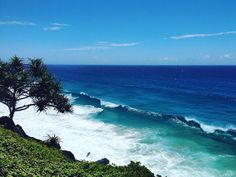 Now I see why everyone can't stop talking about the surf  #goldcoast#snapperrocks#dbar#australia#travel#weekend#surf#sun#ocean#beach#visitgoldcoast#discoverqueensland#love#amazingview#downunder#adventure#summer#snapper#beautiful#pandanus#pumping by josiecmorris