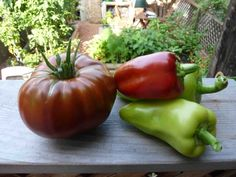 Paul Robeson tomato and Little Bells peppers