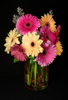 Pink and yellow gerbera daisies arranged in a vase for a weekly flower order.  To view our entire selection please visit us at www.starflor.com #flowers #events #eventdecor