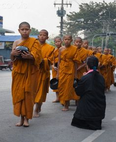 Young Buddhist monks collecting alms in  Ayutthaya, Thailand