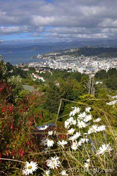 Wellington, New Zealand. Given half a chance, I'd live here.