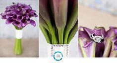 flowers, purple, purple flowers, love, weddings, Linda Schilberg Photography    Beautiful day!